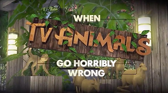 When TV Animals Go Horribly Wrong
